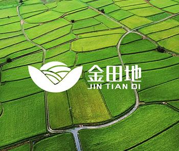 龙博品牌设计-金田地LOGO